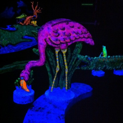 last night I went blacklight mini golfing and I found a pink flamingo <3