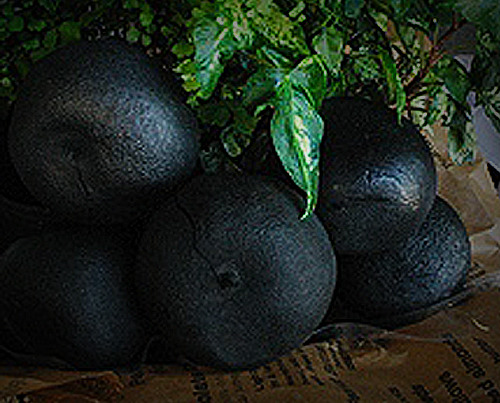 charcoal (black) oranges :nakadera, imabari, ehime prefecture, japan while not a food these charcoals made from whole oranges are used as air fresheners in centerpieces. these pictured come from sai-sai kiteya, a local farmers' market in the ehime prefecture sell for ¥50.
