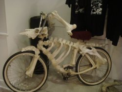 collegehumor:  Bone Bike Looks like this guy got a bike for his kid.