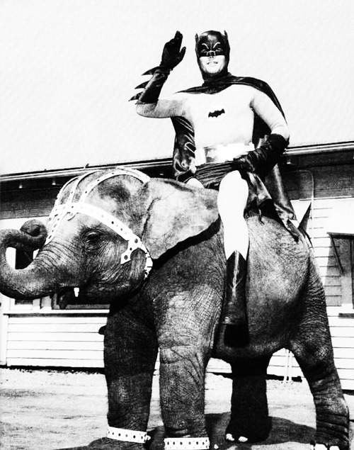 vintagegal:  Adam West (1960's)