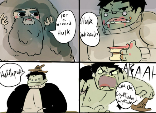 dani-phandomz:  overdramatictoast:  onac911:  Requested Hulk as Harry Potter  i will never NOT reblog this omg   THE SORTING HAT