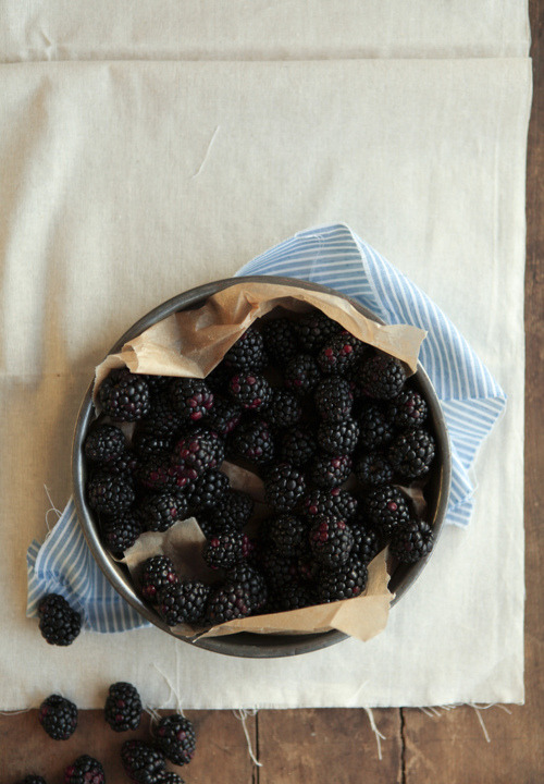 thisisastoryofagiiirl:   blackberries are my favoriteee