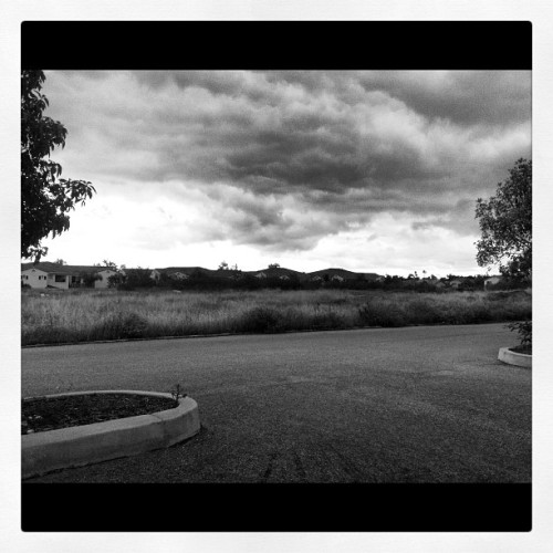Day-26 #blackandwhite #photoadayapril cloudy day makes for perfect lighting :] #rainyday #cloudy #clouds #field #bw #blackandwhite  (Taken with Instagram)
