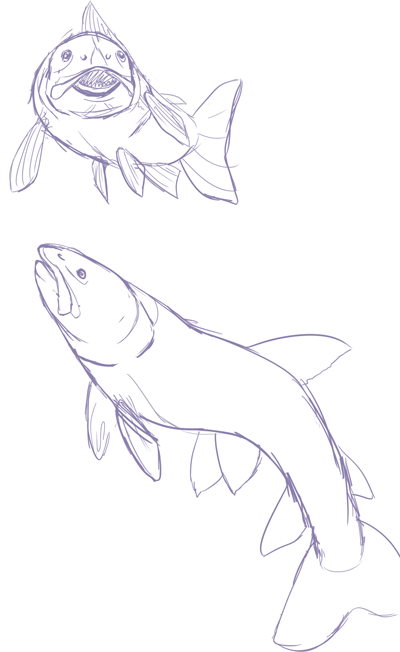 wow trout are hard to draw