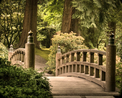 bluepueblo:  Wooden Bridge, Japanese Garden, Portland, Oregon photo by robertcrum