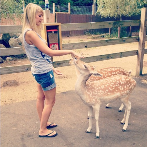 Taken with Instagram at York's Wild Kingdom