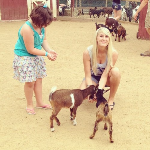 Hoggin the goats. (Taken with Instagram at York's Wild Kingdom)