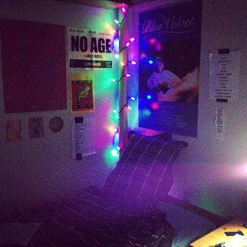 spoiledspace:  an essential addition to my dorm room  Pretty!