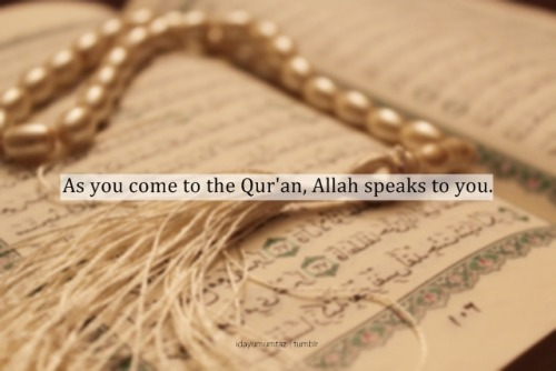feeqah87:  To read the Qur'an is to listen to Him and to know His commands.