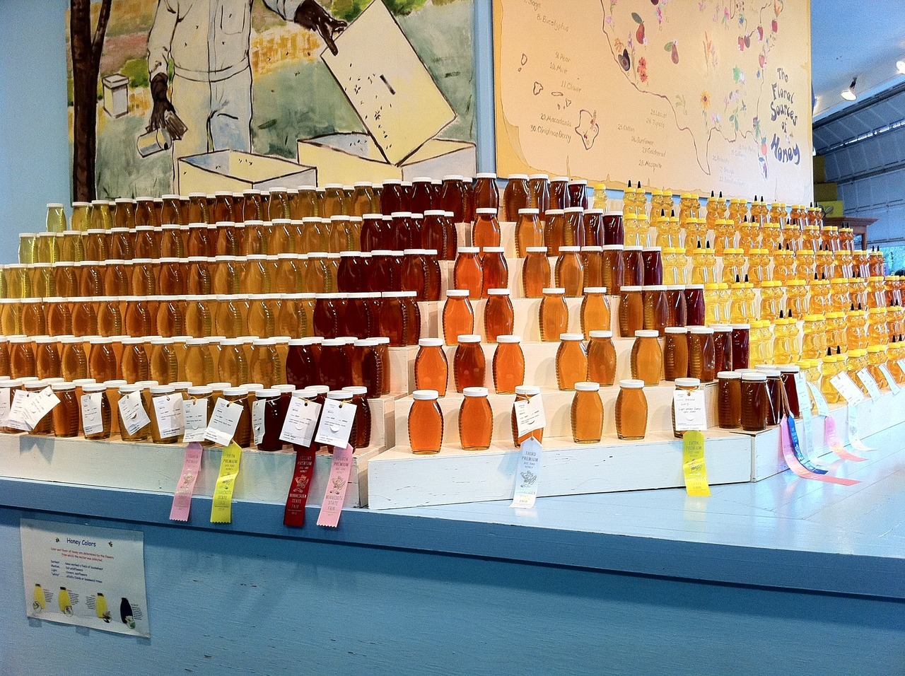 SUBMISSION: The 2012 Liquid Honey Contest Display in the Agriculture-Horticulture Building at the Minnesota State Fair.  Same as last year and every year that I've ever been there (31 years?).  My favorite part of the fair.  It amazes me how consistent these displays are from year to year.  LIQUID (EXTRACTED) HONEYQuality honey, containing no more than 18.6% moisture, packed in one (1) lb. queenline or classic jars, fittedwith appropriate metal or plastic lids. Entry to consist of 12 jars/bottles. Score Criteria - Liquid HoneyContainer - appearance and cleanliness……………………………………………………….10Color - conformity to schedule ……………………………………………………………………15Volume - accuracy and uniformity of fill…………………………………………………………10Absence of impurities, including froth …………………………………………………………..15Moisture, scaled by percentage ………………………………………………………………….20Clarity - absence of crystals, bubbles …………………………………………………………..20Flavor - absence of off aroma or flavor …………………………………………………………10TOTAL 100