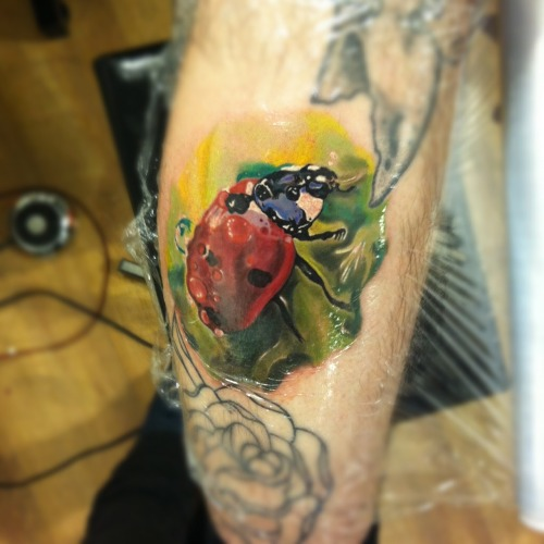 LadyBird Tattoo Artist: Radu Rusu (realism) @ Art & Soul Tattoo, Plymouth, UK