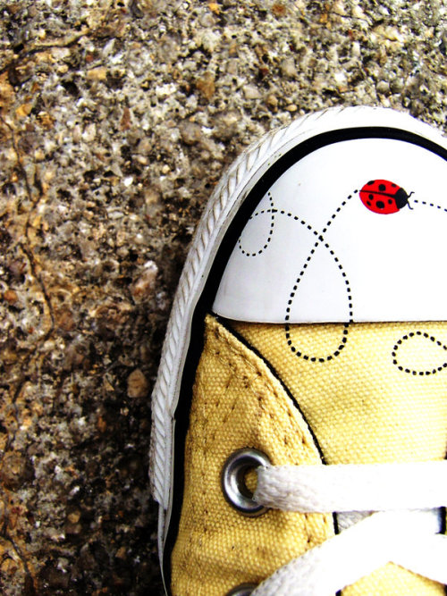 Cute Lady Beetle Converse