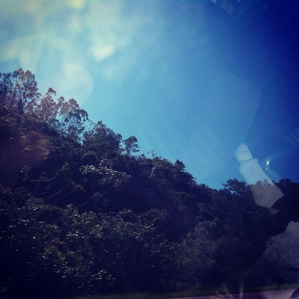 #natureza #nature #day #dia #sky #céu #forest #floresta #viajando  (Publicado com o Instagram)
