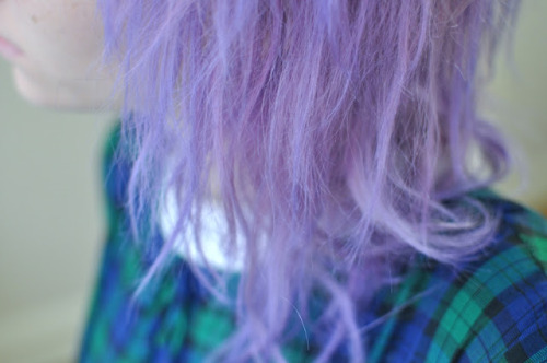 a new blog post about lavender hair