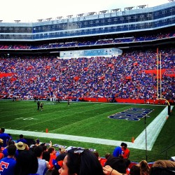 First Florida game! 👍 go Gators!🏈 (Taken with Instagram)