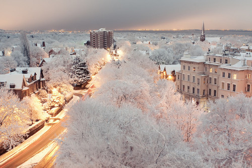 illusionwanderer:  Winter Wonderland by Jurassic-O on Flickr. Liverpool, England