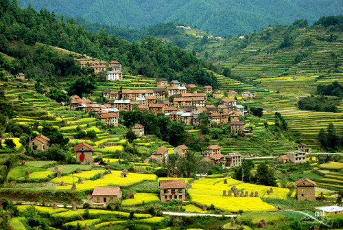 illusionwanderer:  Palung Village, Nepal (by Mohan Duwal)