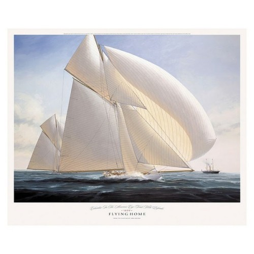 """ Flying Home "" …. Limited Edition Print by Artist:  John Mecray, US"