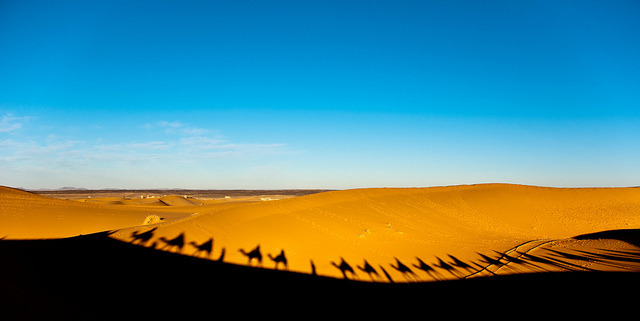| ♕ |  Shadows of caravan - Erg Chebbi, Morocco | by © Zanthia
