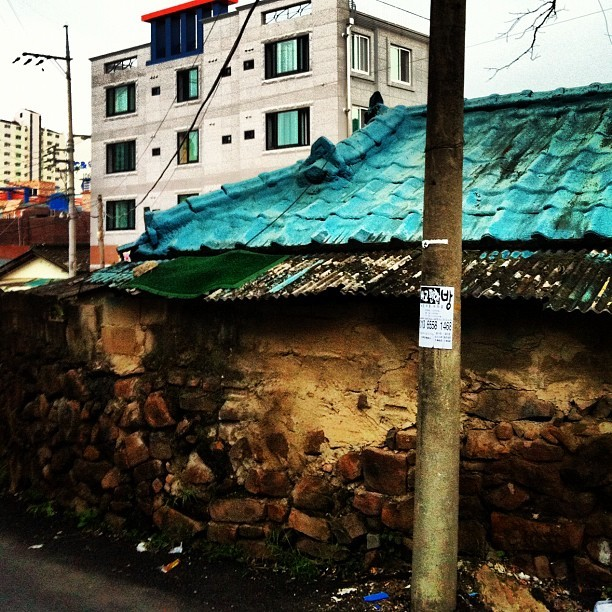 Old and the new #old #new #daegu #korea #asia #concrete #construction #architecture #building #tin #roof #corrugated #blue #green #mold #urban #decay #outdoor #scruffy #gentrification #대구  (Taken with Instagram)