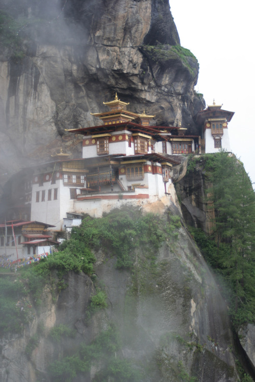 iseetreesinthesea:  always blog this monastery