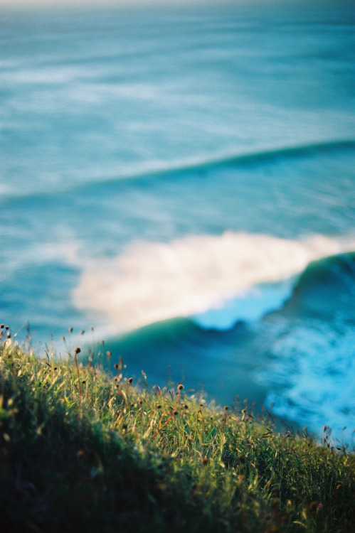 Grass and wave (by malpractice)