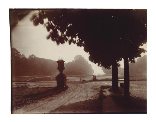 Saint-Cloud (printing-out paper, 1926) – Eugène Atget (1857–1927)