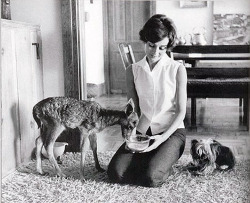 suicideblonde:  Audrey Hepburn with her pet fawn Pip and dog Famous