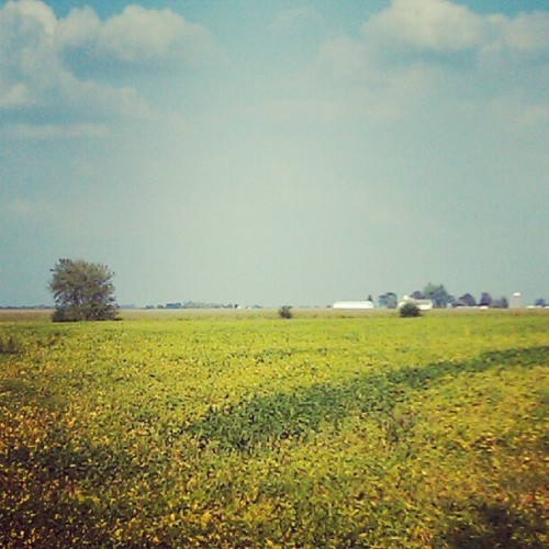 Iowa (Taken with Instagram)