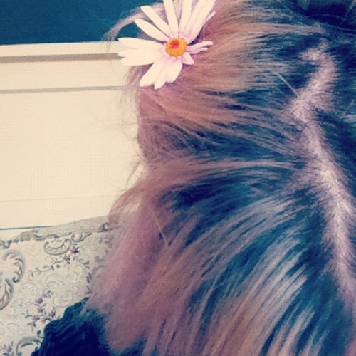 Hippie hair #daisy #flower #pinkhair #regrowth #colouredhair #pink  (Taken with Instagram)