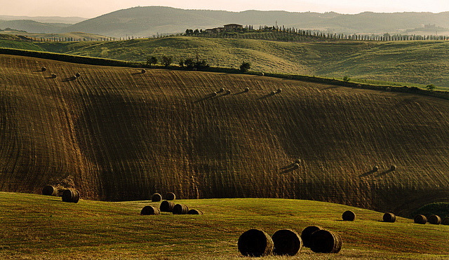 | ♕ |  Tuscan Harvest - Val d'Orcia  | by © David Butali | via ysvoice