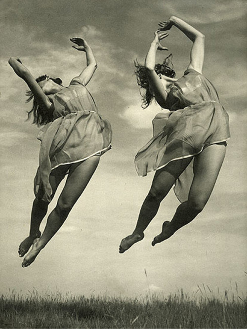 honey-rider:  Vladimir Tolman - Swallows, 1930s