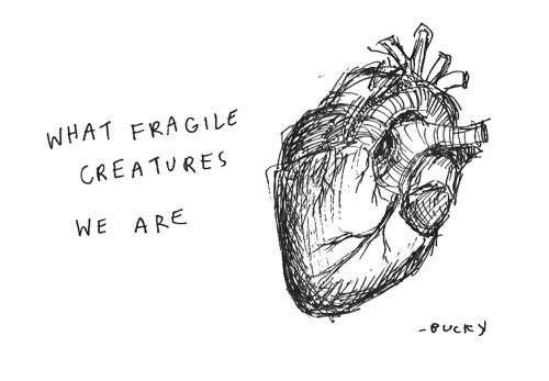 "buckyandlouissa:  ""fragile"" by bucky"
