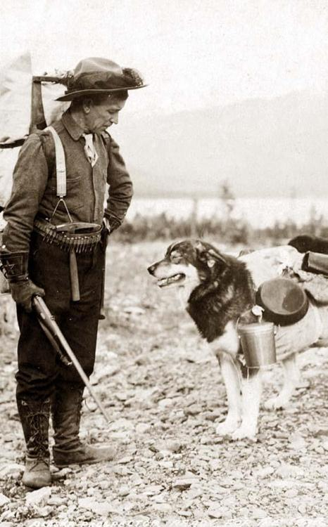 Alaska prospector and pack dog. I like this picture! I don't know the photographer, but I found this picture here : http://www.old-picture.com
