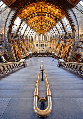 Splendid! viaThe Natural History Museum London, U.K.