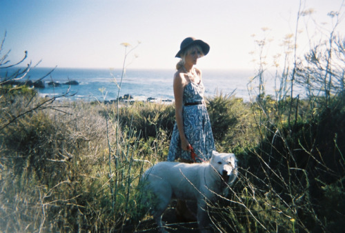 annaelsaa:  the little deer: big sur birthday