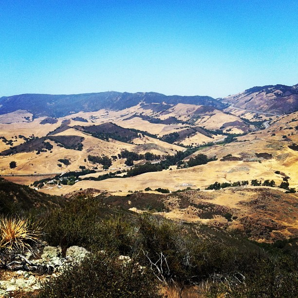 The Cuesta Pass in San Luis Obispo. #slo #hiking #outdoors #sanluis #cuestapass #the101 #101  (Taken with Instagram at Cuesta Pass)