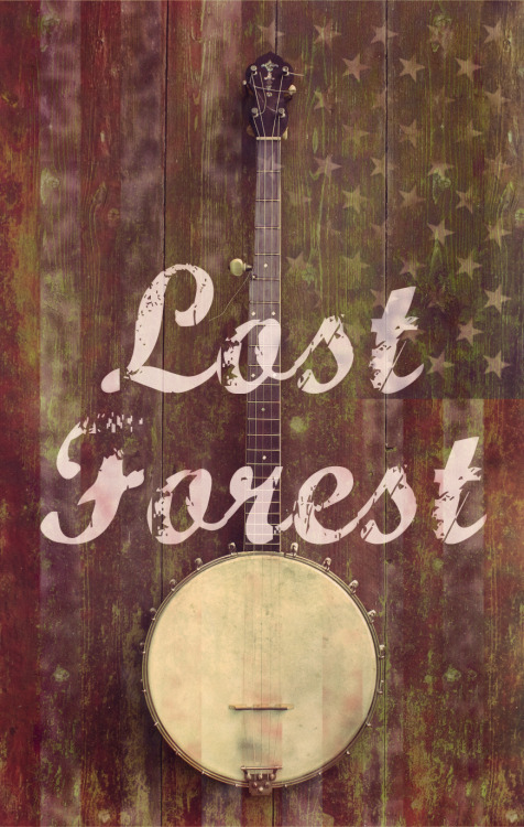 girlmeetsbanjo:  lostforestclothing:  A LITTLE LOST FOREST TEASERLIKE US ON FACEBOOKWWW.FACEBOOK.COM/LOSTFORESTCLOTHING   this seems promising.