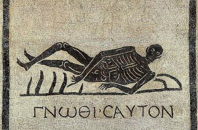 "poisonwasthecure:   ""Memento Mori mosaic from excavations in the convent of San Gregorio, Via Appia, Rome, Italy. The Greek motto gnōthi sauton (know thyself, nosce te ipsum) combines with the image to convey the famous warning: Respice post te; hominem te esse memento; memento mori. (Look behind; remember that you are mortal; remember death)."""