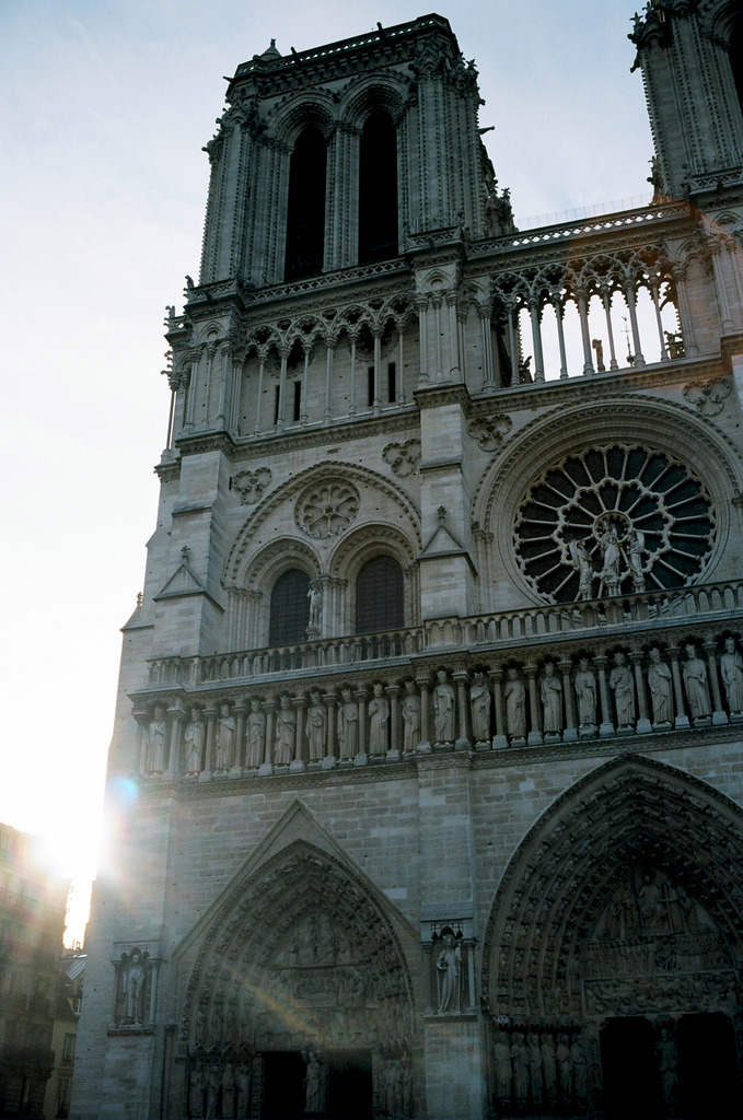 refluent:  Notre Dame view (by Analog Photos)