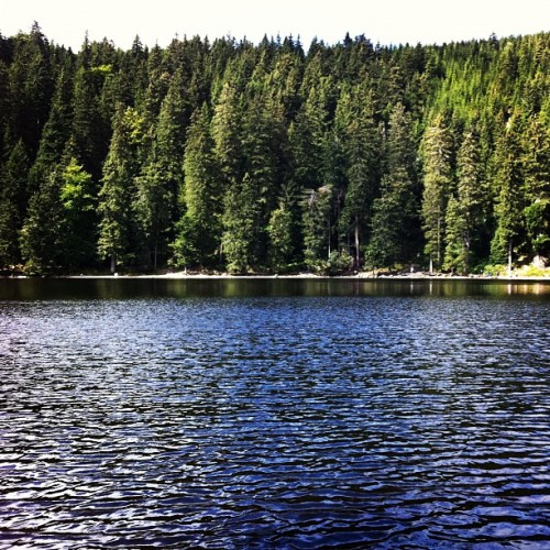 nada-pw-1r:  Lovely! #LakeMummelsee #BlackForest #Germany ♥ (Taken with Instagram at Black Forest - Germany)