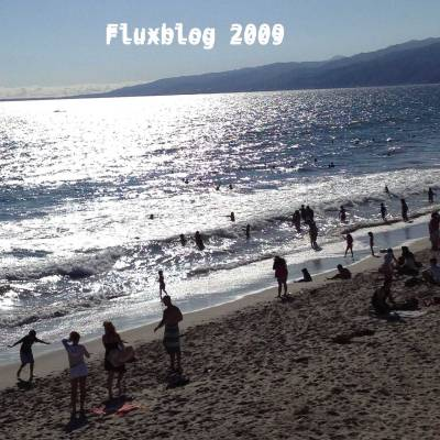 The celebration of the 10th anniversary of Fluxblog concludes with the 2009 survey mix, which includes 150 excellent songs spread across 8 discs. This look back on the recent past features classics by Lady Gaga, Animal Collective, Phoenix, Tune-Yards, Dirty Projectors, Bat for Lashes, St. Vincent, Neko Case, Raekwon, Big Boi, the xx, Maxwell, Wild Beasts, Grizzly Bear, Shakira, Das Racist, the Dead Weather, Miley Cyrus and many more.
