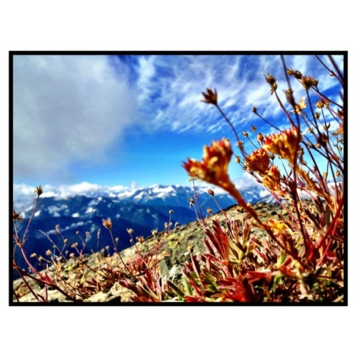 Taken with Instagram at Crater Mountain, North Cascades, WA
