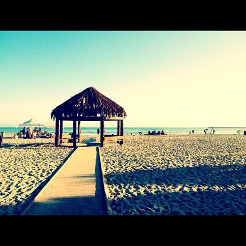 Doheny (Taken with Instagram)