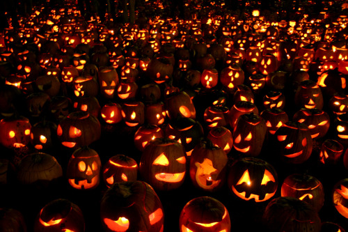 (by innusa) 30,128 lit pumpkins in Boston Common