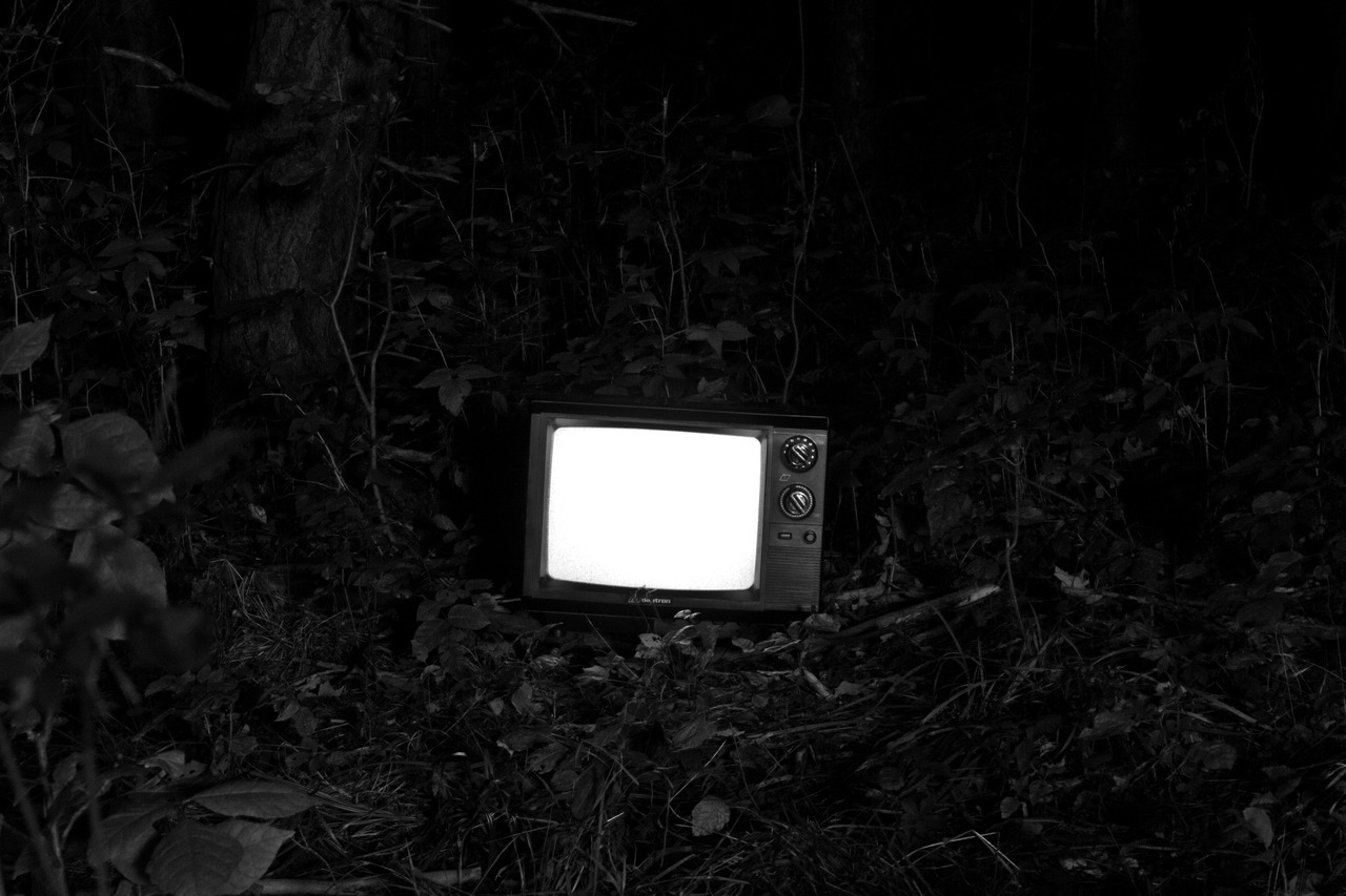 A transmission in the forest  C.F.B.
