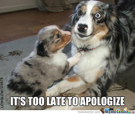 Too Late To Apologize…….