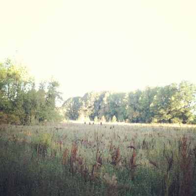 Exploring. #Running (Taken with Instagram)