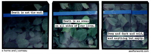 softerworld:  A Softer World: 862 (the shuffle of crabs on the ocean floor)