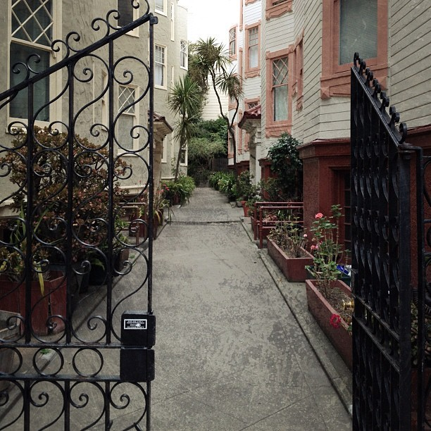 For the gardening enthusiast #sfentryways (Taken with Instagram)
